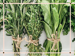 GREENS, HERBS AND FOUGERES